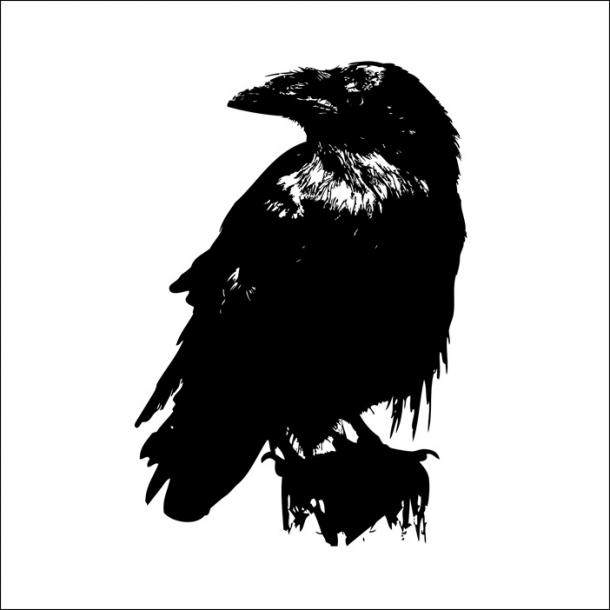 Fugl - Sort - Gennemsigtig sticker 15x15 cm