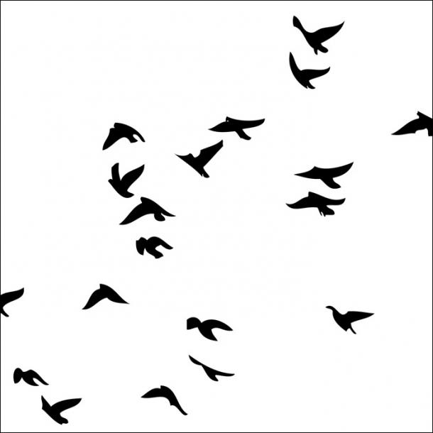 Kleine Vögel - Schwarz - Durchsichtiger Fliesenaufkleber 15x15 cm