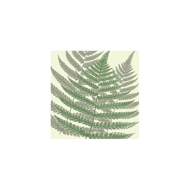 Bregne by Dims - Heldækkende sticker 15x15 cm
