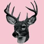 Hjort by Dims - Flise sticker fra Home Junkie - Find den her