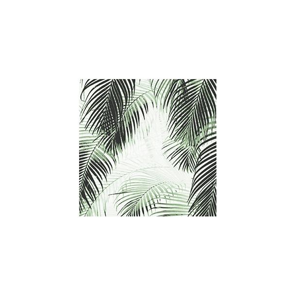 Palme by Dims - Durchsichtiger Fliesenaufkleber 15x15 cm