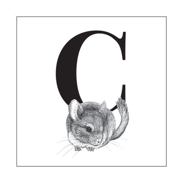 C - Gennemsigtig sticker 15x15 cm