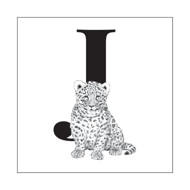 J - Gennemsigtig sticker 15x15 cm