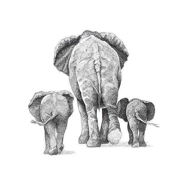 Elefanter - Gennemsigtig sticker 15x15 cm