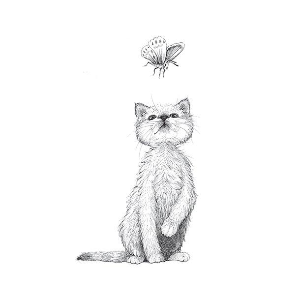 Kätzchen - Durchsichtiger Fliesenaufkleber 15x15 cm