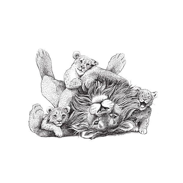 Løver - Gennemsigtig sticker 15x15 cm