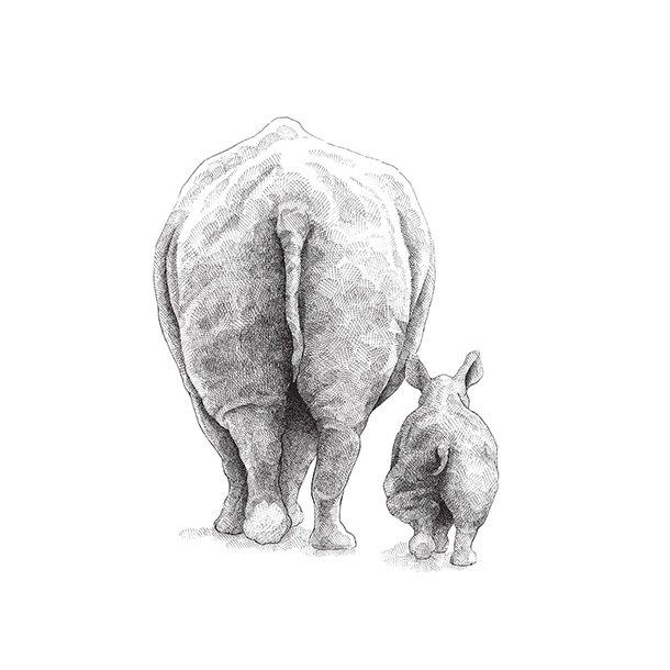 Nashörner - Durchsichtiger Fliesenaufkleber 15x15 cm