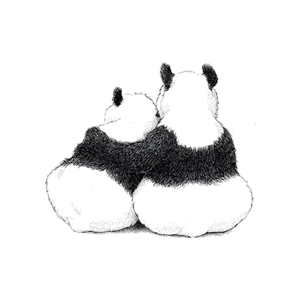 Pandaer - Gennemsigtig sticker 15x15 cm