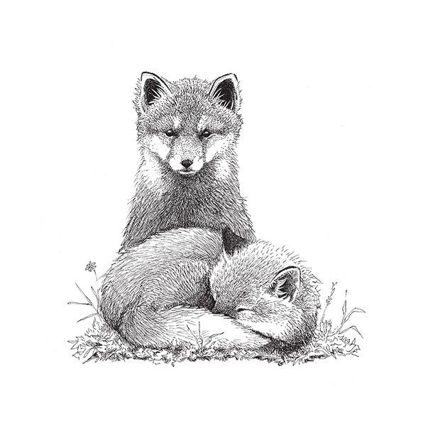Baby Füchse - Deckende Fliesenaufkleber 15x15 cm