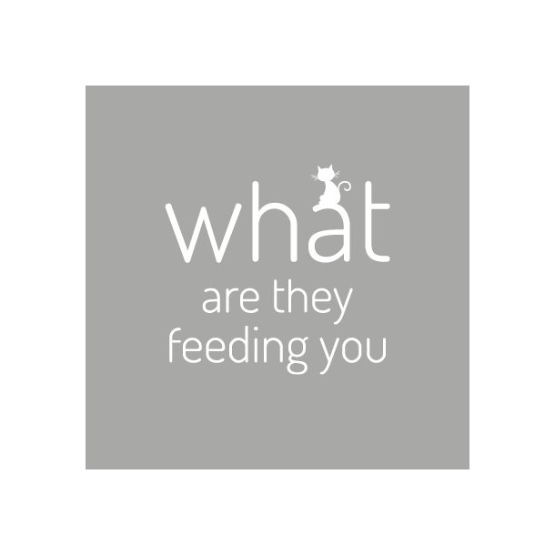 What are they feeding you - Friends - Gennemsigtig sticker 15x15 cm