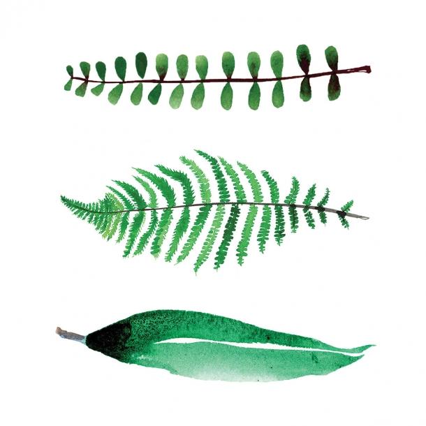 3 blade - Gennemsigtig flisesticker 15x15 cm